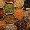 Spiritual Dimension of Food Security